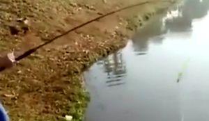 Kobieta na rybach