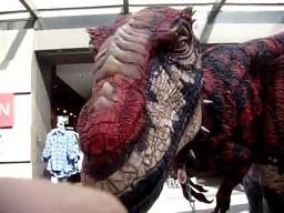 Welociraptor w Melbourne