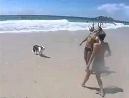 To uczucie, gdy pies lepiej odbija piłkę od ciebie