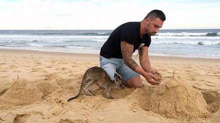 Gdy twój najlepszy przyjaciel to kangur