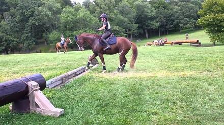 Koń, który boi się skakać