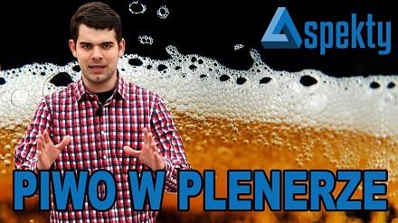 Picie alkoholu w miejscu publicznym