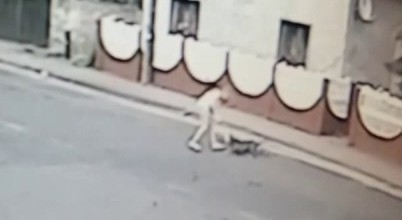 Pies zaatakował i pogryzł Bogu ducha winną dziewczynę