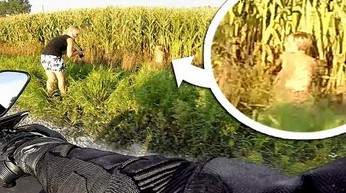 Goła baba w kukurydzy i inne przypadki z polskich dróg