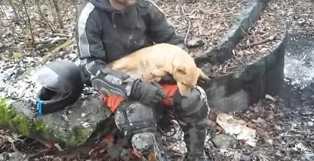 Endurowcy ratują psa porzuconego w lesie