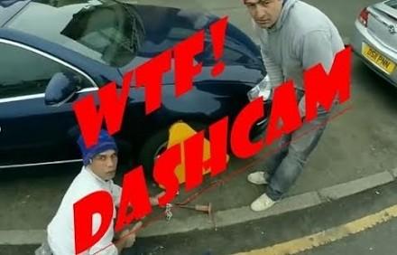 WTF Dashcam, czyli dziwne i zabawne nagrania z kamerek samochodowych