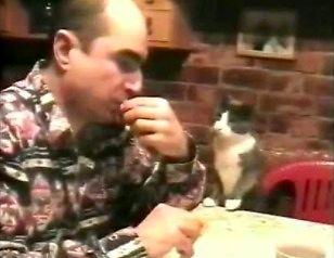 Kot głuchoniemego prosi o jedzenie