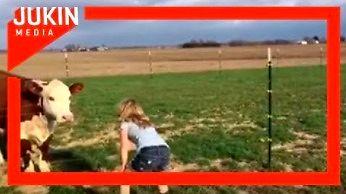 Dziewczynka bawi się z krową