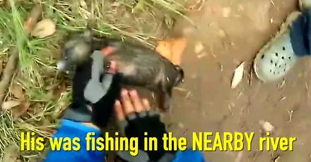 Wędkarz ratuje podtopionego szczeniaka