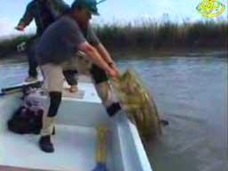 Boże spraw, abym  złapał taką rybę
