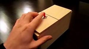 Pudełko pełne niespodzianek