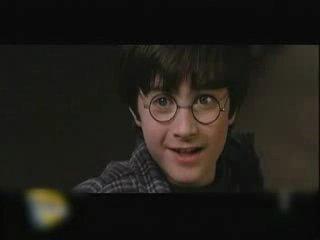 Harry Potter to gej?