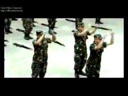 Papaya Dance w wojsku