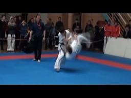 Kyokushin karate KO