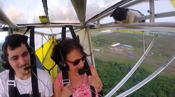 Niespodziewany pasażer na gapę w samolocie