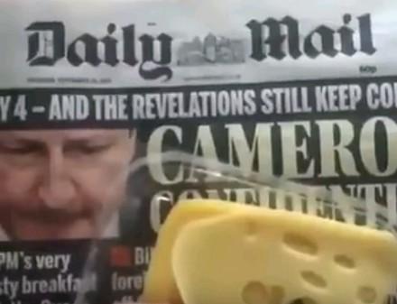 Żółty ser prawde ci powie