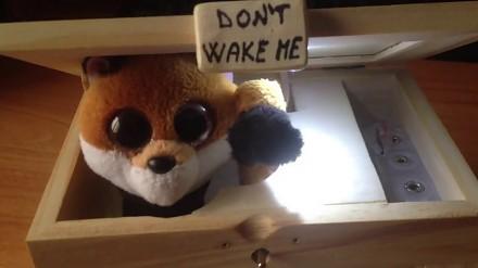 Pod żadnym pozorem nie budzić lisa!