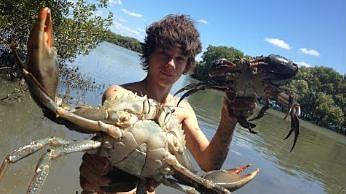 Łapanie i gotowanie krabów mułowych