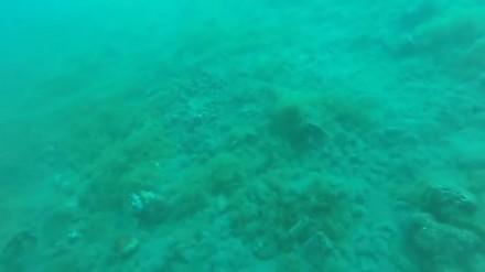 Trzęsienie ziemi nagrane pod wodą