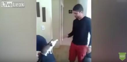 A ty jak witasz się ze swoim kotem?