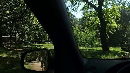 Pamiętaj! W parku safari NIE wysiada się z samochodu - dla tych o mocnych nerwach
