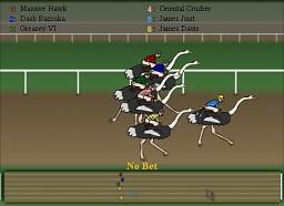 Ostrich Racer!